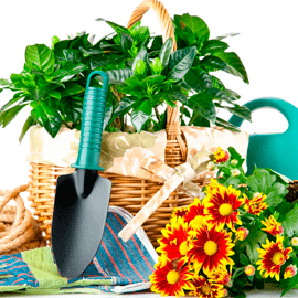 Товары для сада